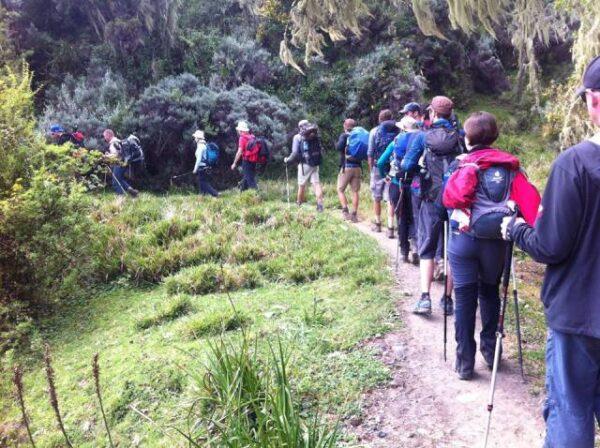 Marangu route 5 day