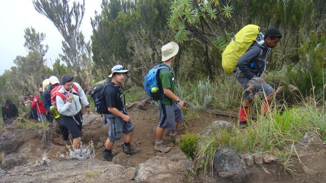 Kilimanjaro climbing cost