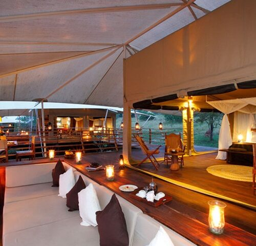 6 Days Luxury Safari